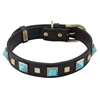 Brown leather dog collar with brass studs and pyramid Turquoise cabochons